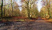 Randonnée Marche LONGPONT - en forêt de Retz_31_Longpont_carrefour de la Pointe Chemise_AR - Photo 5