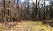Randonnée Marche LONGPONT - en forêt de Retz_31_Longpont_carrefour de la Pointe Chemise_AR - Photo 12