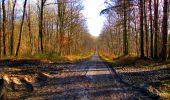 Randonnée Marche LONGPONT - en forêt de Retz_31_Longpont_carrefour de la Pointe Chemise_AR - Photo 8