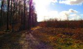 Randonnée Marche LONGPONT - en forêt de Retz_31_Longpont_carrefour de la Pointe Chemise_AR - Photo 1