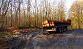Randonnée Marche LONGPONT - en forêt de Retz_31_Longpont_carrefour de la Pointe Chemise_AR - Photo 7