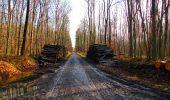 Randonnée Marche LONGPONT - en forêt de Retz_31_Longpont_carrefour de la Pointe Chemise_AR - Photo 6