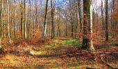 Randonnée Marche LONGPONT - en forêt de Retz_31_Longpont_carrefour de la Pointe Chemise_AR - Photo 3