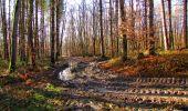 Randonnée Marche LONGPONT - en forêt de Retz_31_Longpont_carrefour de la Pointe Chemise_AR - Photo 9