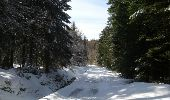 Randonnée Raquettes à neige LES NOES - la loge aux gardes - Photo 1