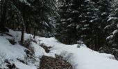 Randonnée Raquettes à neige LES NOES - la loge aux gardes - Photo 3