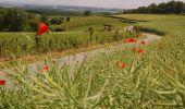 Randonnée Moteur Havelange - Circuit Saveurs et Patrimoine 6 communes - Photo 14