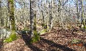 Randonnée V.T.T. CERNAY-LA-VILLE - cernay vtt - Photo 9