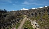 Randonnée Marche Sion - Bisse de Lentine 04.2015 - Photo 2