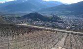 Randonnée Marche Sion - Bisse de Lentine 04.2015 - Photo 3
