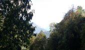 Trail Walk Unknown - gandruk-tadapani - Photo 1