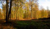 Trail Walk LONGPONT - en foret de Retz_32_Longpont_Vertes Feuilles_AR - Photo 12