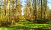 Trail Walk LONGPONT - en foret de Retz_32_Longpont_Vertes Feuilles_AR - Photo 65