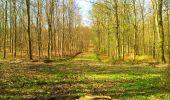 Trail Walk LONGPONT - en foret de Retz_32_Longpont_Vertes Feuilles_AR - Photo 85