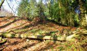 Trail Walk LONGPONT - en foret de Retz_32_Longpont_Vertes Feuilles_AR - Photo 149