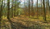 Trail Walk LONGPONT - en foret de Retz_32_Longpont_Vertes Feuilles_AR - Photo 83