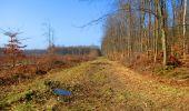 Trail Walk LONGPONT - en foret de Retz_32_Longpont_Vertes Feuilles_AR - Photo 169