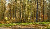 Trail Walk LONGPONT - en foret de Retz_32_Longpont_Vertes Feuilles_AR - Photo 51