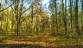 Trail Walk LONGPONT - en foret de Retz_32_Longpont_Vertes Feuilles_AR - Photo 34