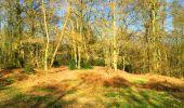 Trail Walk LONGPONT - en foret de Retz_32_Longpont_Vertes Feuilles_AR - Photo 30