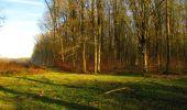 Trail Walk LONGPONT - en foret de Retz_32_Longpont_Vertes Feuilles_AR - Photo 8