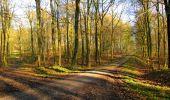 Trail Walk LONGPONT - en foret de Retz_32_Longpont_Vertes Feuilles_AR - Photo 22