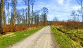 Trail Walk LONGPONT - en foret de Retz_32_Longpont_Vertes Feuilles_AR - Photo 92