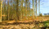 Trail Walk LONGPONT - en foret de Retz_32_Longpont_Vertes Feuilles_AR - Photo 107