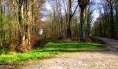 Trail Walk LONGPONT - en foret de Retz_32_Longpont_Vertes Feuilles_AR - Photo 18