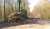 Trail Walk LONGPONT - en foret de Retz_32_Longpont_Vertes Feuilles_AR - Photo 117