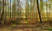 Trail Walk LONGPONT - en foret de Retz_32_Longpont_Vertes Feuilles_AR - Photo 59