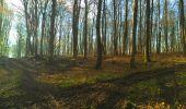 Trail Walk LONGPONT - en foret de Retz_32_Longpont_Vertes Feuilles_AR - Photo 32