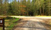 Trail Walk LONGPONT - en foret de Retz_32_Longpont_Vertes Feuilles_AR - Photo 104