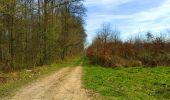 Trail Walk LONGPONT - en foret de Retz_32_Longpont_Vertes Feuilles_AR - Photo 80