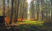 Trail Walk LONGPONT - en foret de Retz_32_Longpont_Vertes Feuilles_AR - Photo 50
