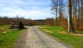 Trail Walk LONGPONT - en foret de Retz_32_Longpont_Vertes Feuilles_AR - Photo 100