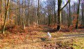 Trail Walk LONGPONT - en foret de Retz_32_Longpont_Vertes Feuilles_AR - Photo 170