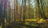Trail Walk LONGPONT - en foret de Retz_32_Longpont_Vertes Feuilles_AR - Photo 45