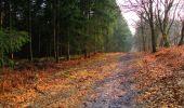 Trail Walk LONGPONT - en foret de Retz_32_Longpont_Vertes Feuilles_AR - Photo 157