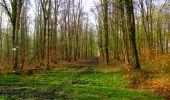 Trail Walk LONGPONT - en foret de Retz_32_Longpont_Vertes Feuilles_AR - Photo 10