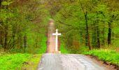 Trail Walk LONGPONT - en foret de Retz_32_Longpont_Vertes Feuilles_AR - Photo 142
