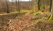 Trail Walk LONGPONT - en foret de Retz_32_Longpont_Vertes Feuilles_AR - Photo 108