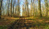 Trail Walk LONGPONT - en foret de Retz_32_Longpont_Vertes Feuilles_AR - Photo 33