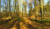 Trail Walk LONGPONT - en foret de Retz_32_Longpont_Vertes Feuilles_AR - Photo 29