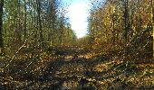 Trail Walk LONGPONT - en foret de Retz_32_Longpont_Vertes Feuilles_AR - Photo 40