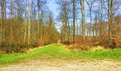 Trail Walk LONGPONT - en foret de Retz_32_Longpont_Vertes Feuilles_AR - Photo 99