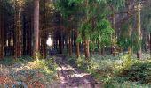 Trail Walk LONGPONT - en foret de Retz_32_Longpont_Vertes Feuilles_AR - Photo 44