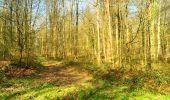 Trail Walk LONGPONT - en foret de Retz_32_Longpont_Vertes Feuilles_AR - Photo 66