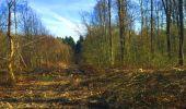 Trail Walk LONGPONT - en foret de Retz_32_Longpont_Vertes Feuilles_AR - Photo 41