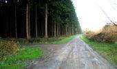 Trail Walk LONGPONT - en foret de Retz_32_Longpont_Vertes Feuilles_AR - Photo 1